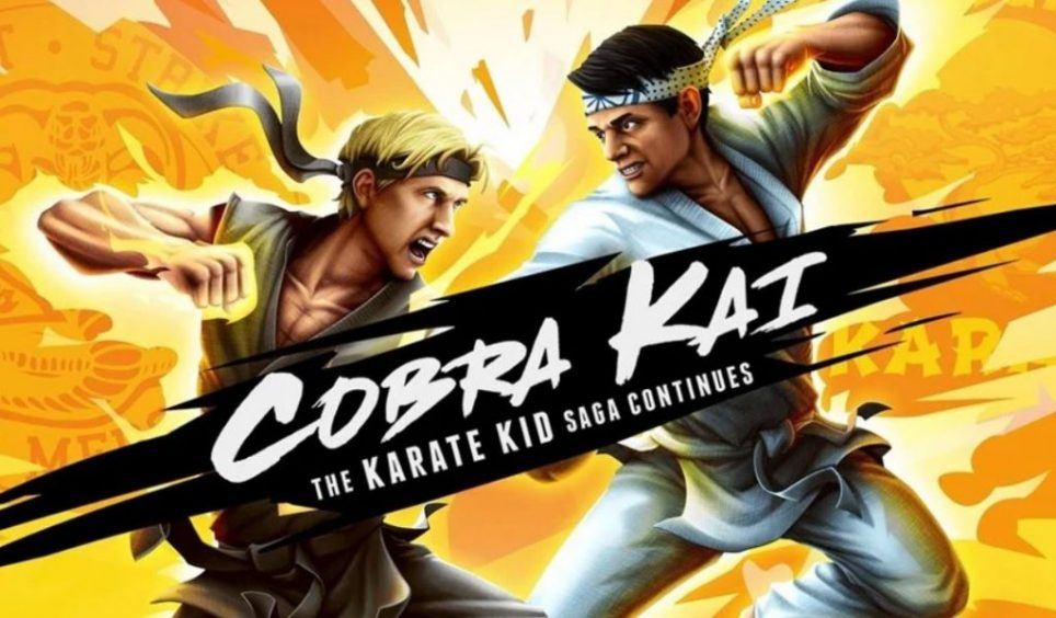 Cobra Kai The Karate Kid Saga Continues